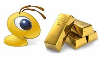 Webmoney WMG золотой кошелек