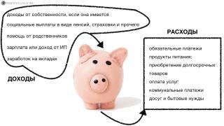 Способы формирования семейного бюджета